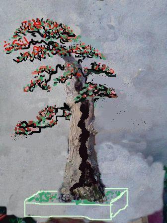 http://espritsdegoshin.fr/components/com_agora/img/members/2074/mini_06052010-1327_bouginavillier-virt.jpg